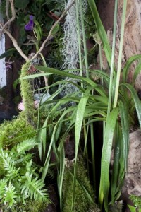Jardin vertical definicion