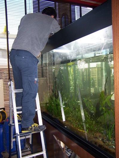 Mantenimiento de aquarios